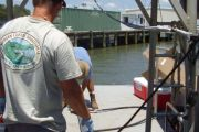Sediment Evaluation, Marine Corps Air Station Beaufort Fuel Pier