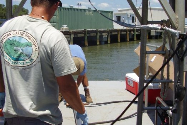 11-0005_MCAS_Sediment Evaluation, Marine Corps Air Station Beaufort Fuel Pier_pic1.JPG