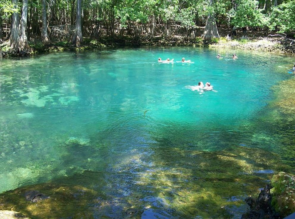 Gov. Rick Scott to Propose $55 Million Budget for Restoring Florida's Springs