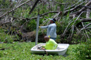 Sediment Characterization Testing and Analysis for San José Lagoon Portion of the Caño Martín Peña Ecosystem Restoration Project, Puerto Rico