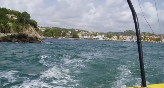 Caribbean Long-Term Monitoring and Management Plan