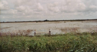 S-332B/C/D Project Site to Support Emergency Actions to Protect the Cape Sable Seaside Sparrow, Florida Everglades (Sparrow Project)