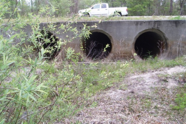 CR 349 Culvert East end.JPG