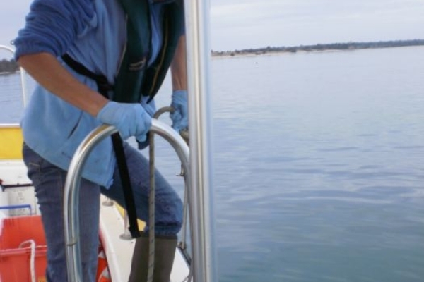 Confirmatory Evaluation of Dredged Material Proposed for Ocean Disposal, USCG Station Fort Macon, Morehead City, North Carolina_pic2.JPG