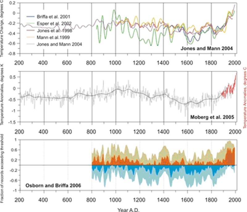 A Perspective on the Temperature of Earth's Climate